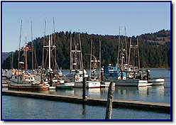 View of the harbor in Old Town Florence on the Siuslaw River.