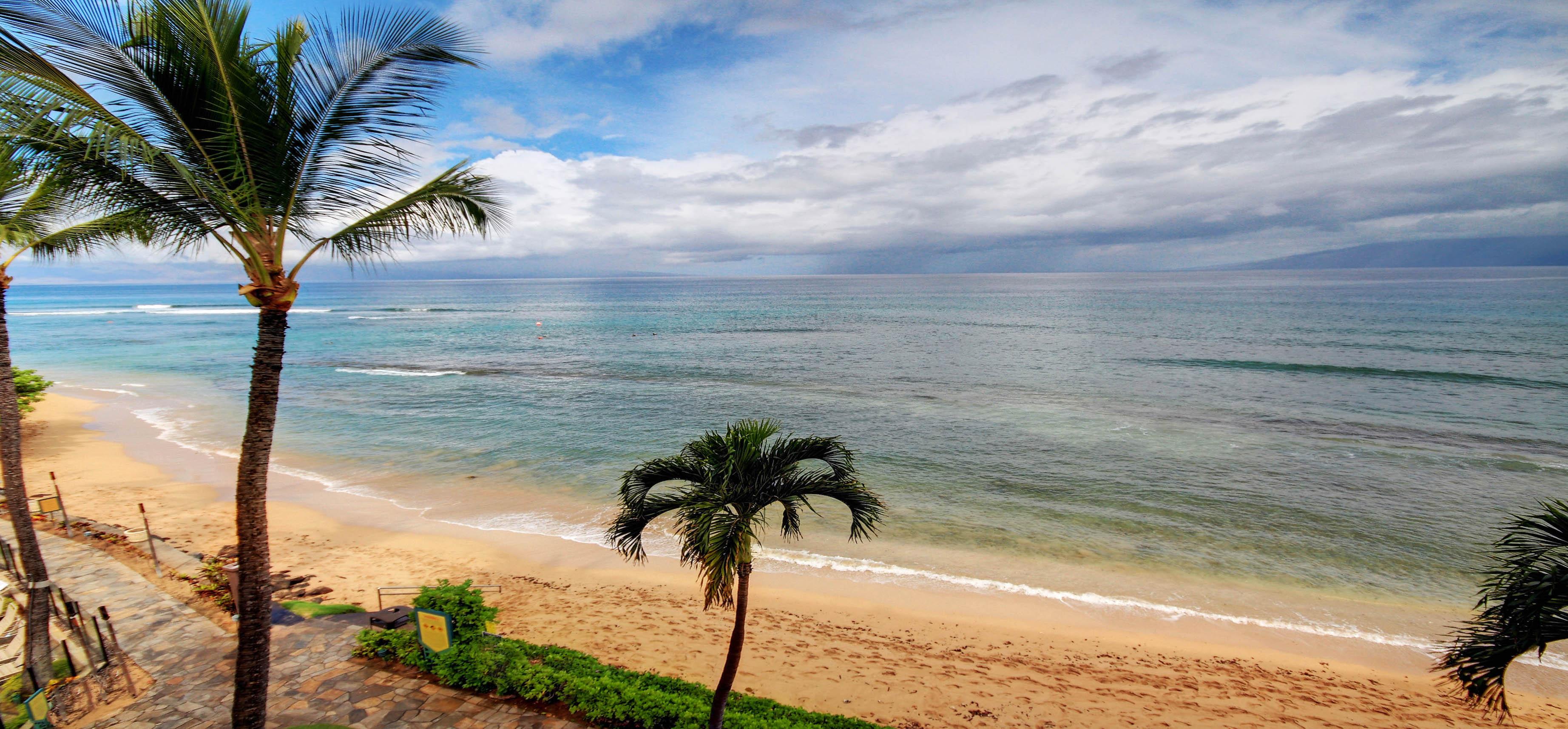 Kaanapali Beach Rentals - Palm trees and beach