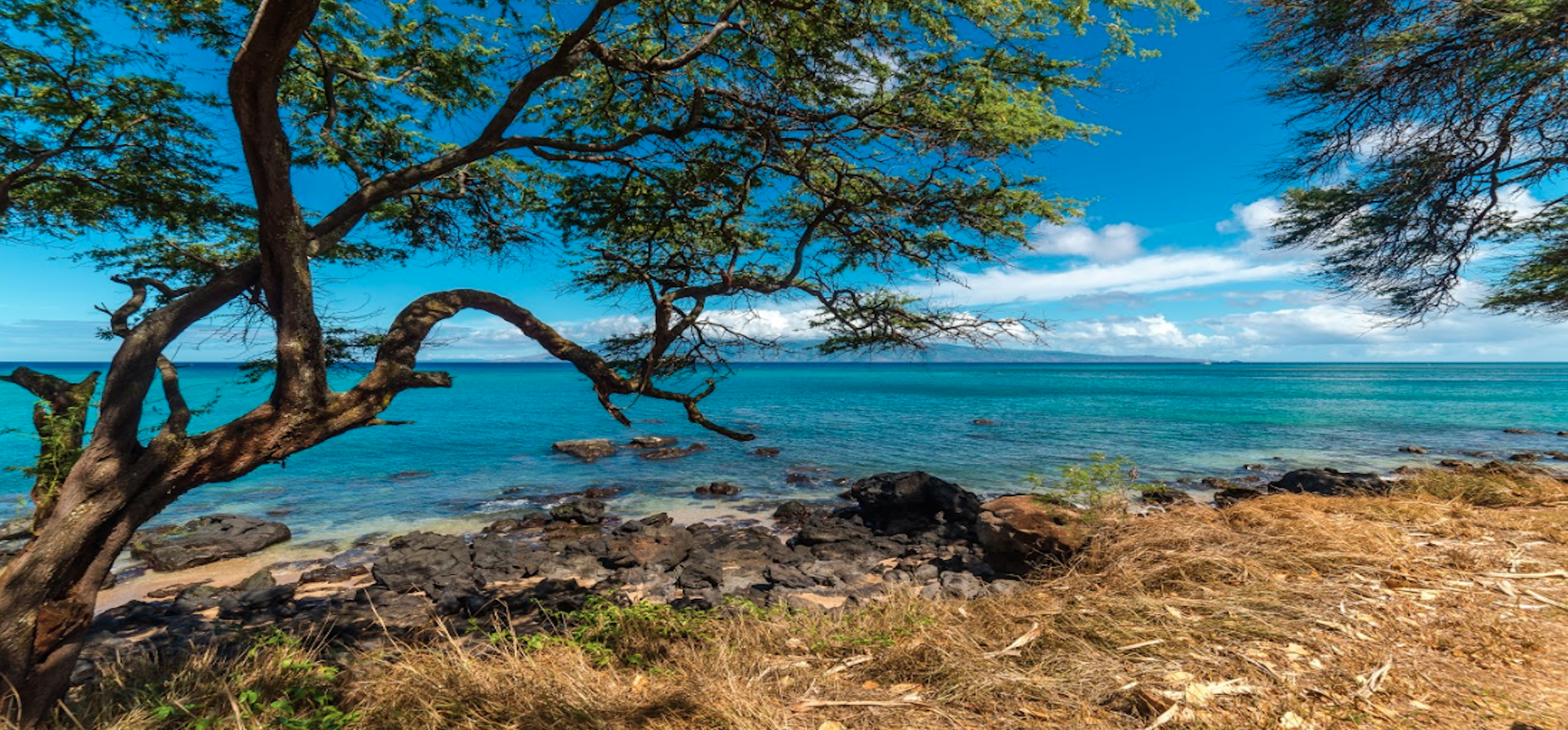 the best time to visit maui | kaanapali beach rentals